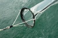 Zooplankton Net