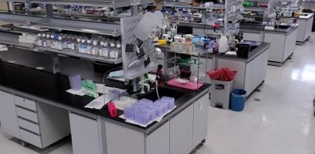 Laboratory Set- Up